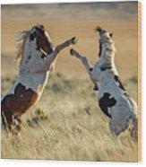 Mustang Rivalry Wood Print