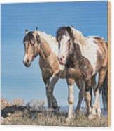 Mustang Twin Stallions Wood Print