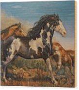 Mustangs On The Run Wood Print