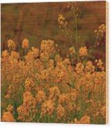 Mustard Garden Wood Print