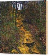 Mustard Hill Wood Print