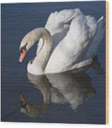 Mute Swan Reflected Wood Print