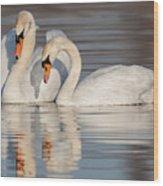 Mute Swans Wood Print