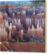 Muted Bryce Wood Print