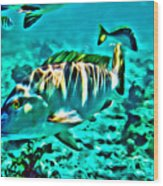 Mutton Snapper Wood Print