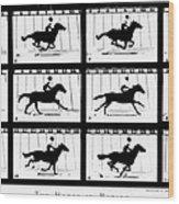 Muybridge: Horse Wood Print