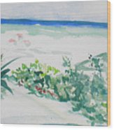 My Beach Cottage In Siesta Key Wood Print