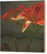 My Daylilies 2 Wood Print