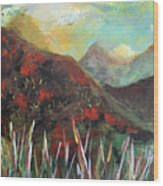 My Days In The Mountains Wood Print