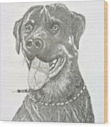 My Dog Kito Wood Print