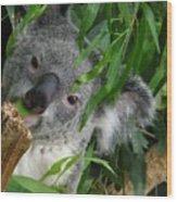 My Eucalyptus Wood Print