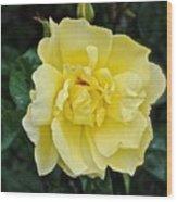 My Favorite Flower Wood Print