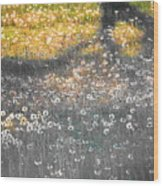 My First Manipulated Image Crowd Of Dandelions In Shadow Of Tree Branches Wood Print
