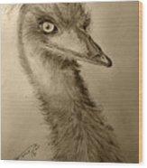 My Friend Emu Wood Print