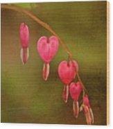My Heart Bleeds Wood Print