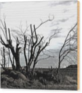 My Home Town-after The Storm Wood Print