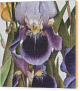 My Iris Garden Wood Print