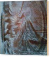 My Kingdom Wood Print