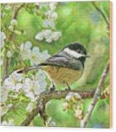 My Little Chickadee In The Cherry Tree Wood Print