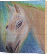 My Little Pony Wood Print