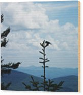 My Mountain Bird Wood Print