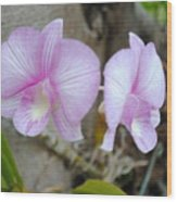 My Orchid # 15 Wood Print