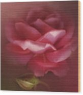 My Ordinary Rose Wood Print