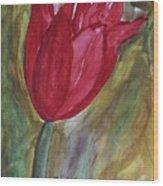 My Red Tulip Wood Print