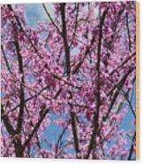 My Redbuds In Bloom Wood Print