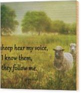 My Sheep Hear My Voice Wood Print