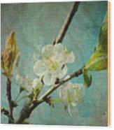 My Springtime Wood Print