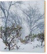 My Winter Love Wood Print