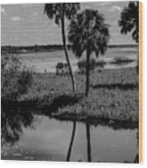 Myakka River Reflections Wood Print
