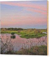 Myakka Wetlands By H H Photography Of Florida Wood Print