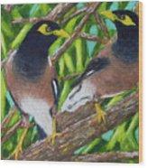 Mynah Birds #474 Wood Print