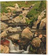 Myrtle Falls Wood Print