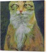 Mysterious Cat Wood Print