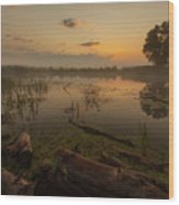 Mysterious Morning Time In Swamp Area. Landscape Wood Print