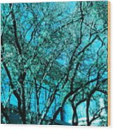 Mysterious Tree Wood Print