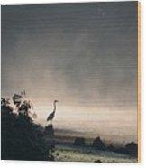 Mystery Heron Wood Print