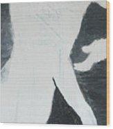 Mystery Man Wood Print