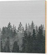 Mystic Forest II Wood Print