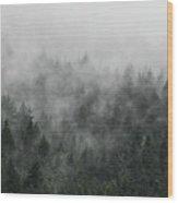Mystic Forest V Wood Print