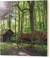 Mystic Mountain Wood Print