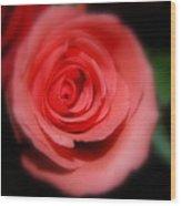 Mystic Pink Wood Print