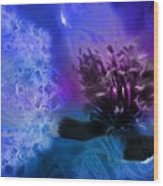 Mystic Poppy Blue Purple  Wood Print