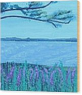 Mystic Strength Of The Niagara River Wood Print