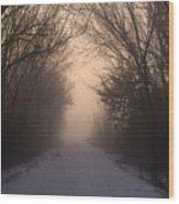 Mystic Trail Wood Print