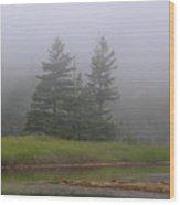 Mystical Acadia National Park Wood Print