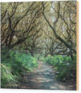 Mystical Angel Oaks  Wood Print